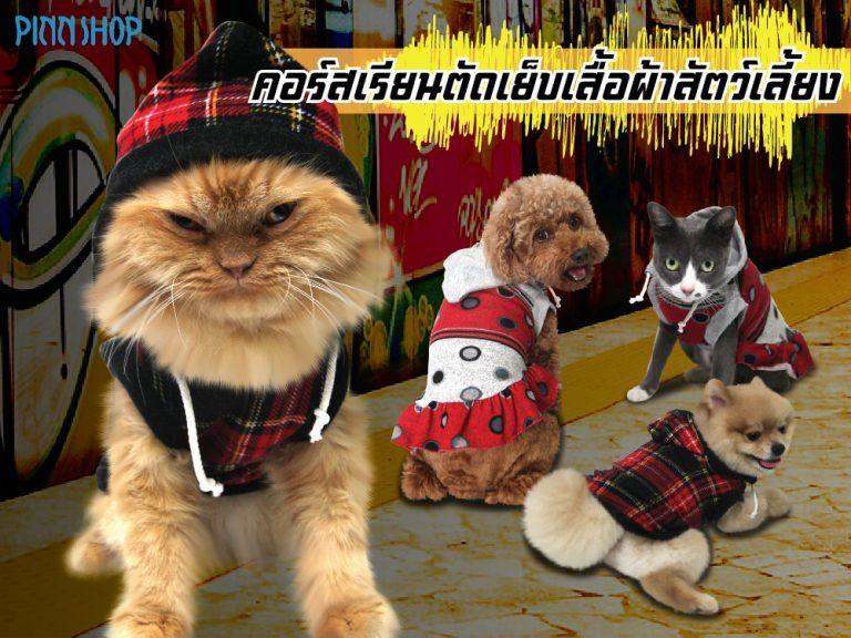 รวมไอเด ยทำเปลแมว คอนโดแมว จากท อ Pvc ทำใช หร อทำเป นอาช พเสร มได Sewingremaker สอนต ดเย บ