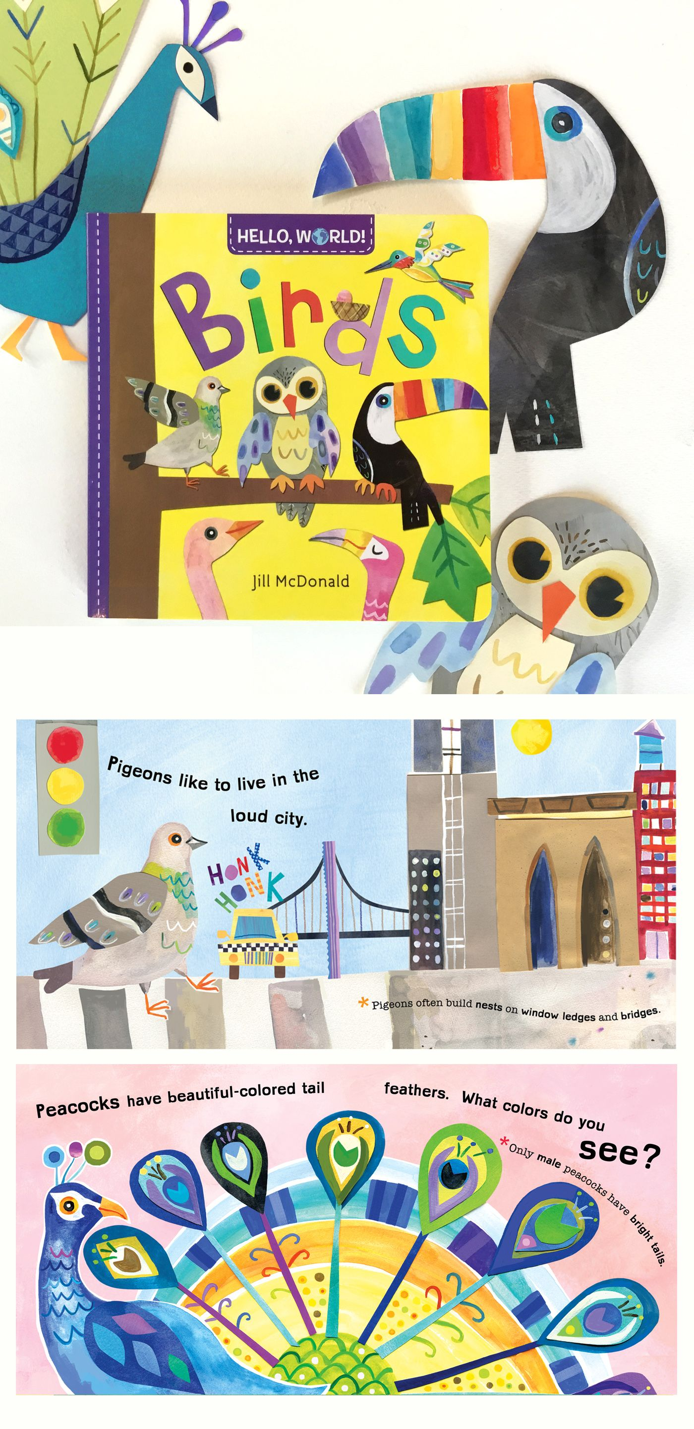 Birds part of the hello world board book series by jill