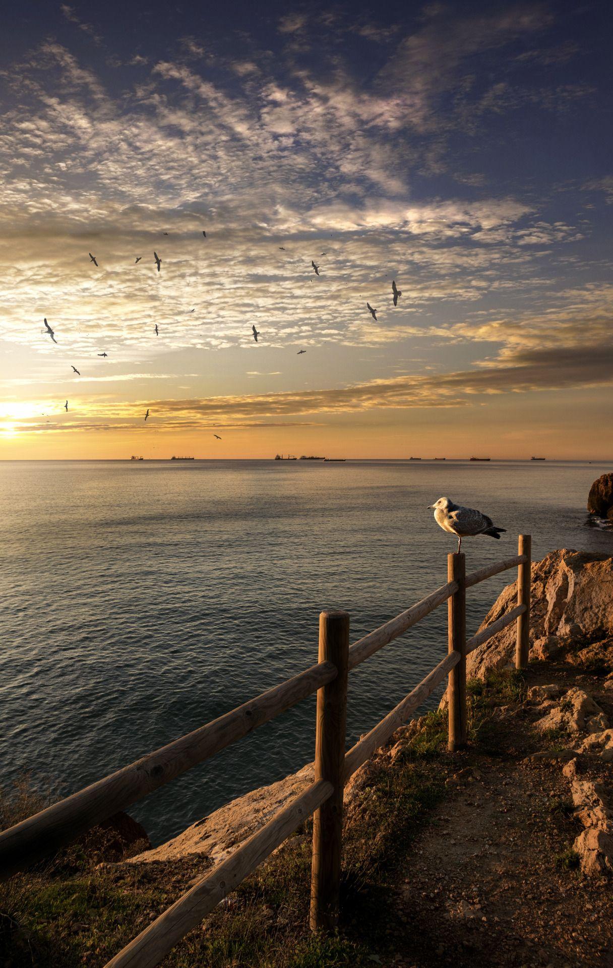 Saenzdesantamaria New Year S Sun F6 3 1 100s Iso 100 Fl18mm  # Muebles Saenz De Santamar?a