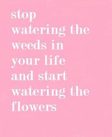 This Weekend~Easy Weekend Activity~Stop Watering the Weeds