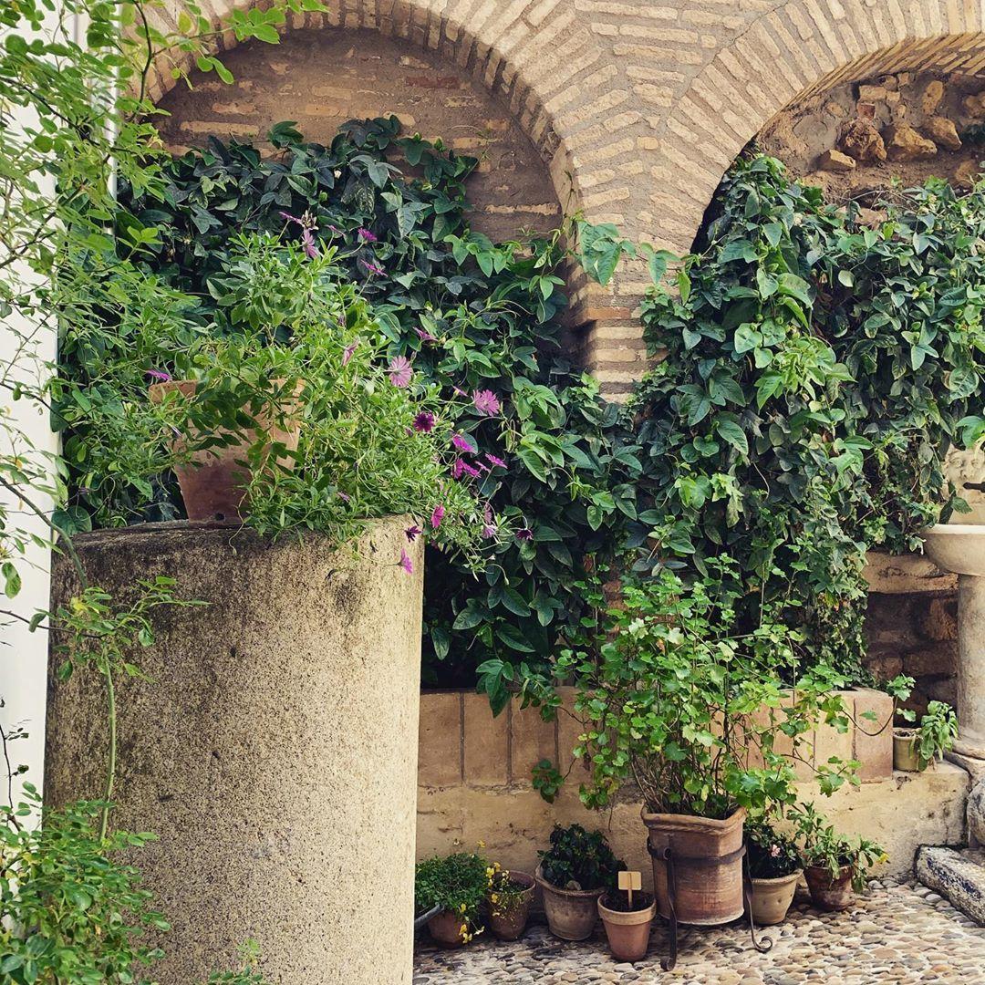 قرطبة Andalus Andalucia Alhambra Alhambrapalace Granada Cordoba Seville Islamic Art Islamic Architecture Art Artist Photography Photographer P