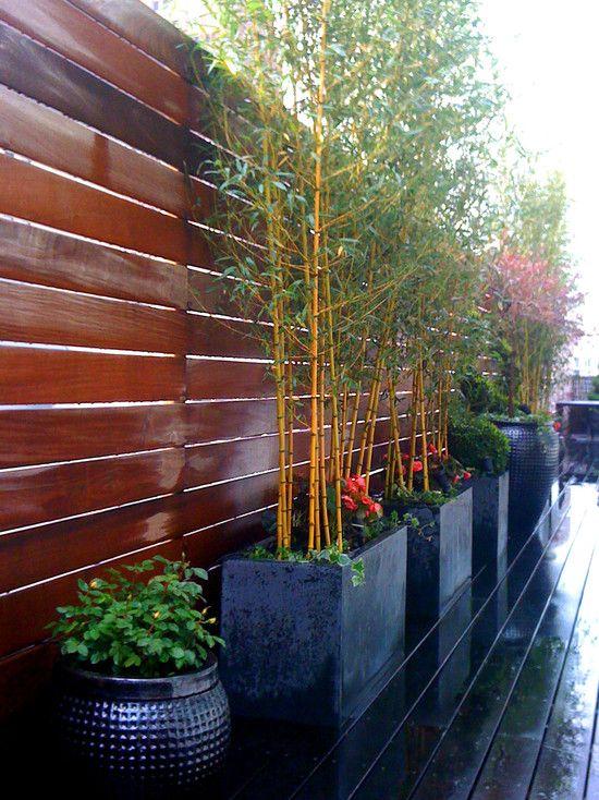 Large outdoor planter box decoration in the garden design for Bamboo garden designs