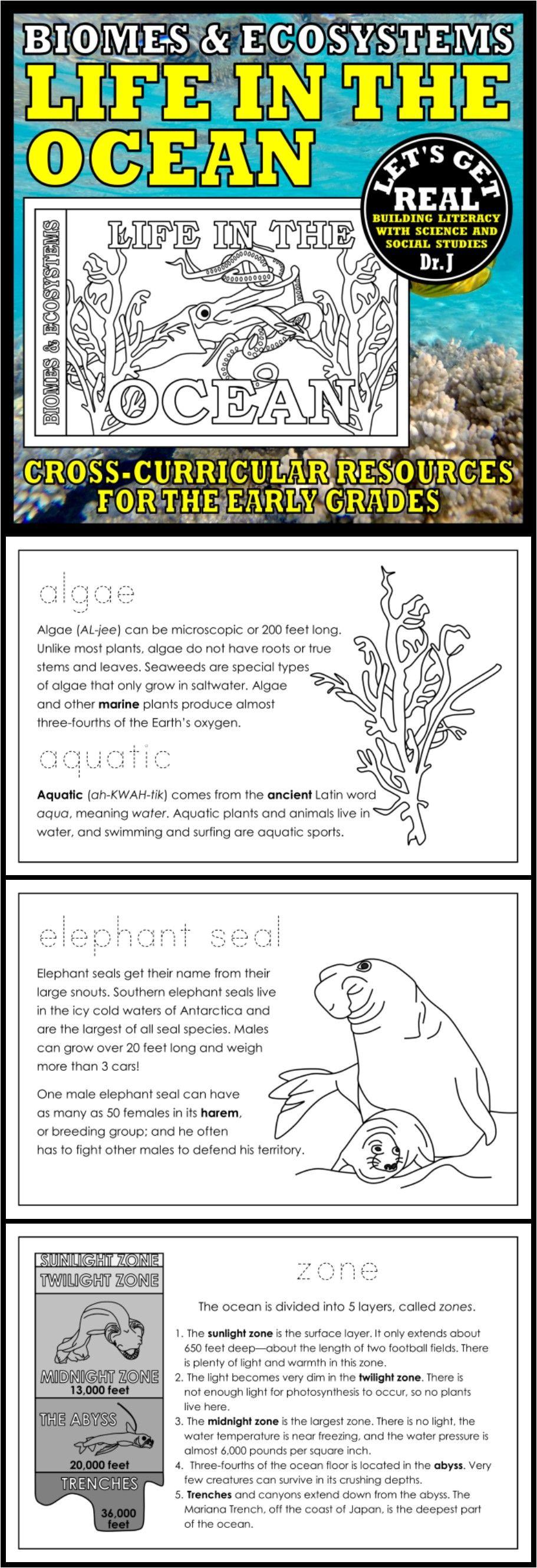 Pin On Biomes Ecosystems And Habitats