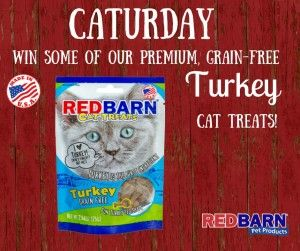 Enter to win turkey cat treats from Red Barn