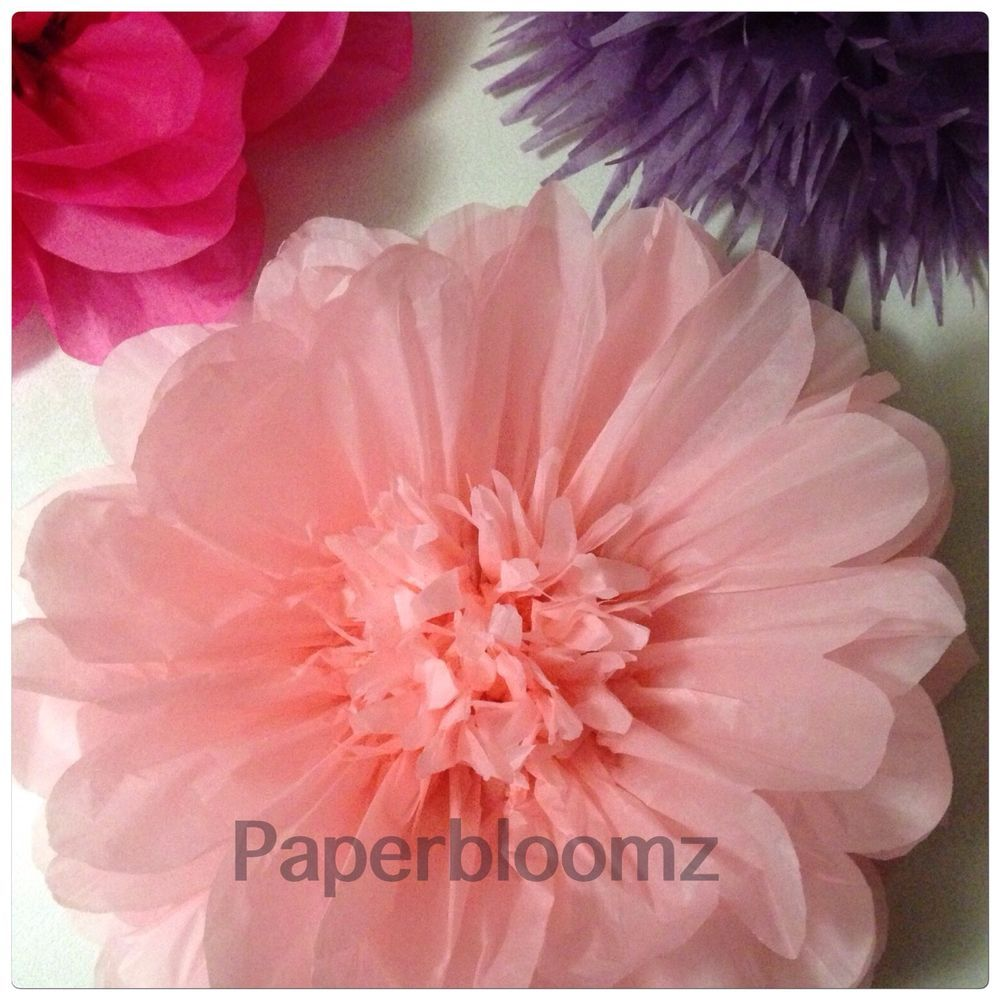 50 x large paperbloomz tissue paper flowers bulk photo backdrops 50 x large paperbloomz tissue paper flowers bulk photo backdrops wall decor ebay mightylinksfo