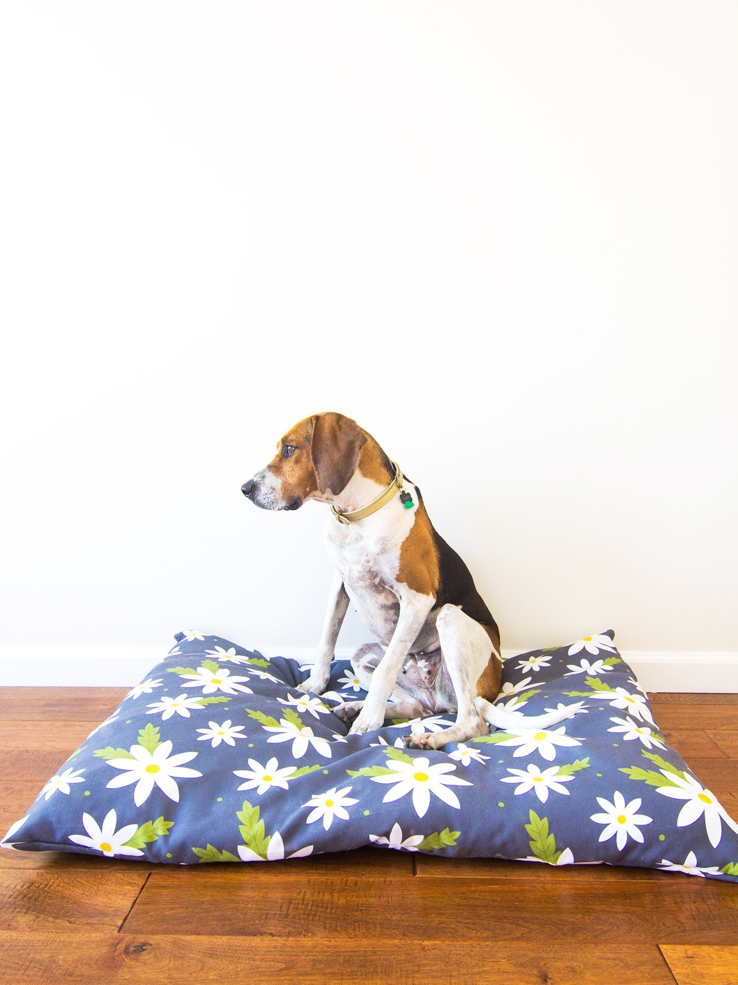 DIY Easy to Sew Zippered Dog Bed Cover Diy dog bed, Dog