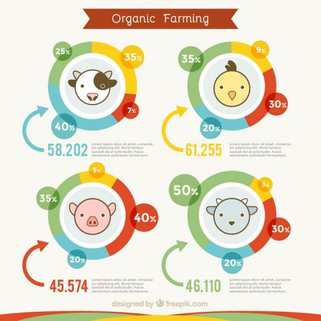 cute organic farming infography with animals free vector