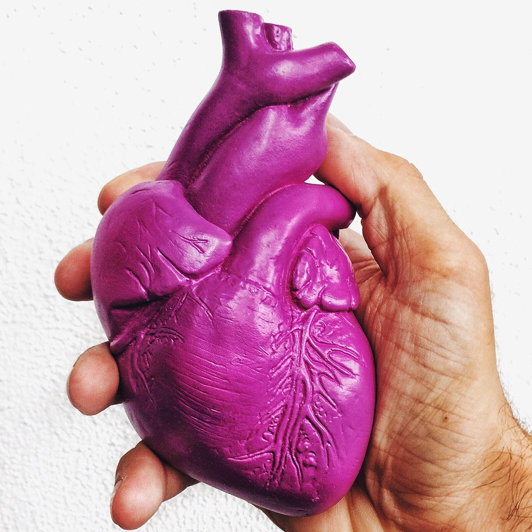 Image result for human heart colored purple pinterest