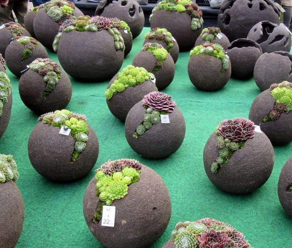 How to Make Cement Balloon Planters #gardencraft