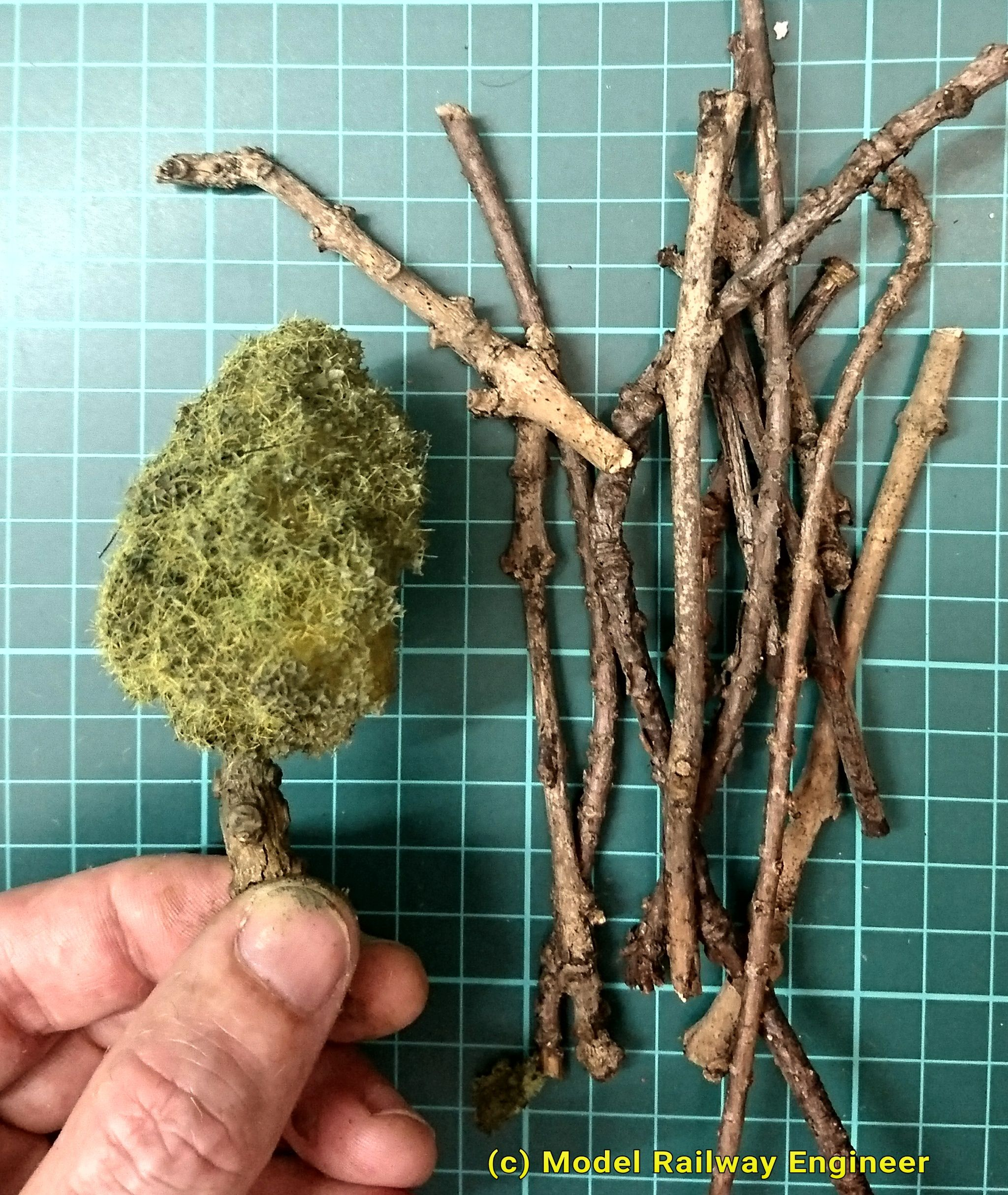 The Cheapest Technique For Making Model Trees – They Look Great Too