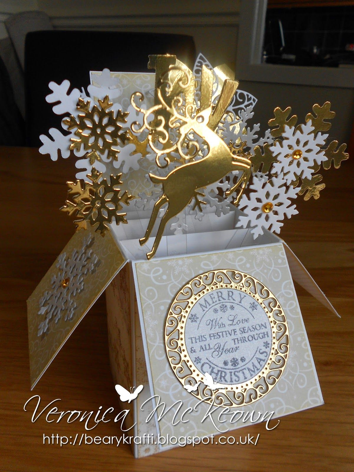 PopUp Box by Veronica McKeown (102114) Card in a Box