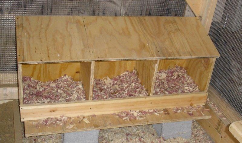 Chicken Nest Boxes Bottom Sticks Out To Make Landing Spot