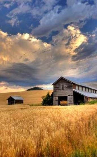 Beautiful Photo This Jigsaw Puzzle Features An Old Barn