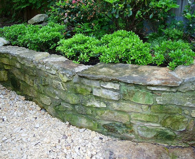 Gumpo azaleas line raised bed in native limestone