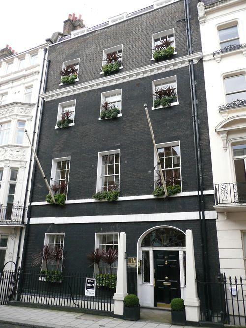 Black Brick White Trim Window Plants Tim This Is How You