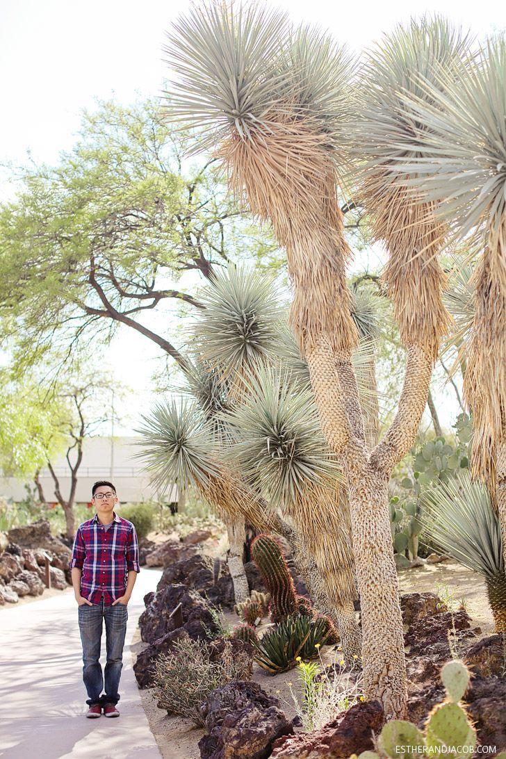 d6f48757afd26cd47a6c5af0a7b08ec7 - Ethel M Chocolate Factory And Botanical Cactus Gardens Las Vegas