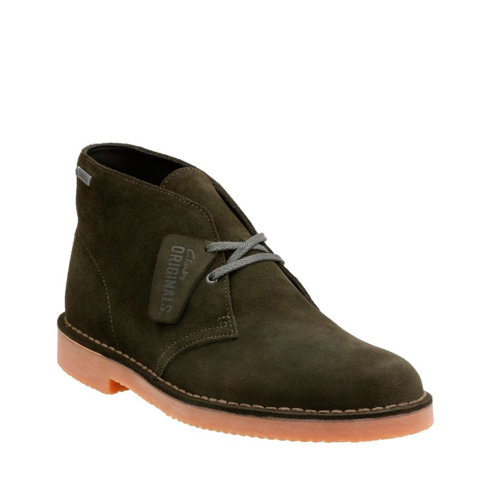 huge sale elegant shoes street price Ashcombe Mid GORE-TEX | Shoes & Boots | Clarks desert boot ...