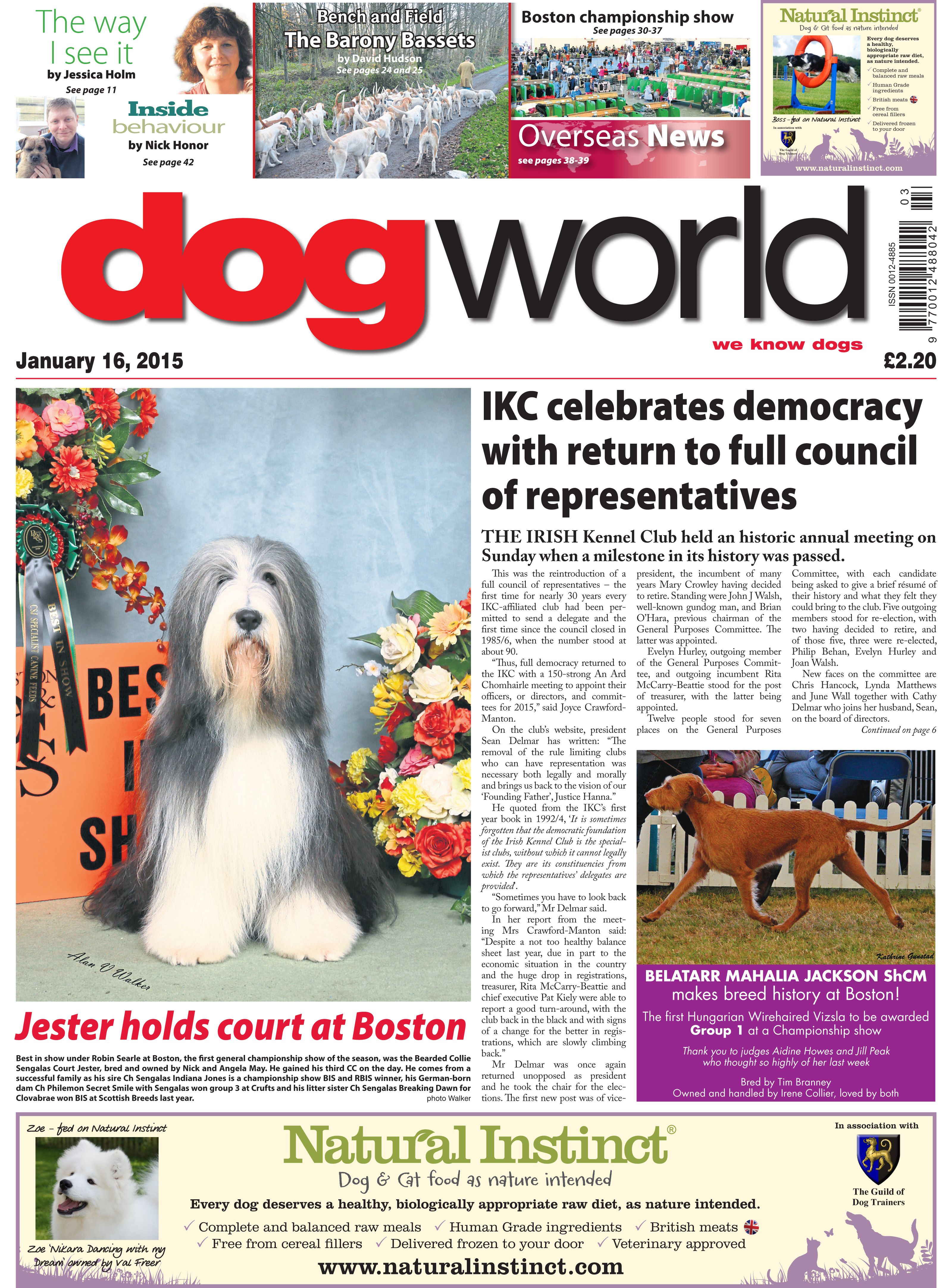Ikc Celebrates Democracy With Return To Full Council Of
