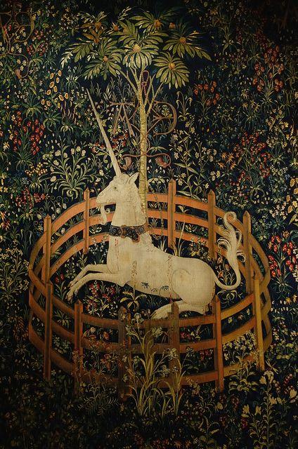 Canadian Needle Nana: Thoughts of Captive Unicorns