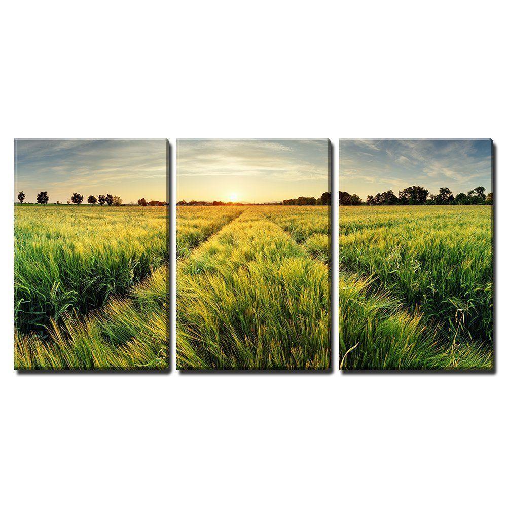 Framed] Rural Landscape Wheat Field Sunset Canvas Wall Art Prints ...