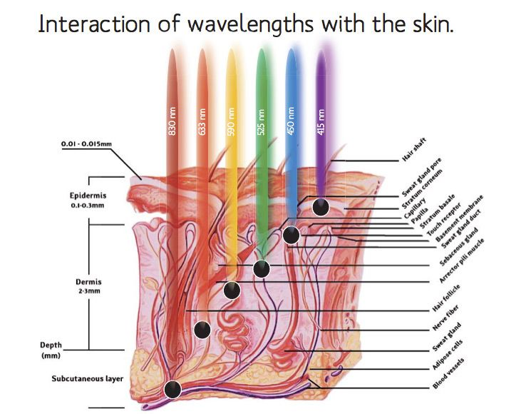 How Do Led Lights Work >> How Does Led Light Therapy Work Aesthetic Led Light