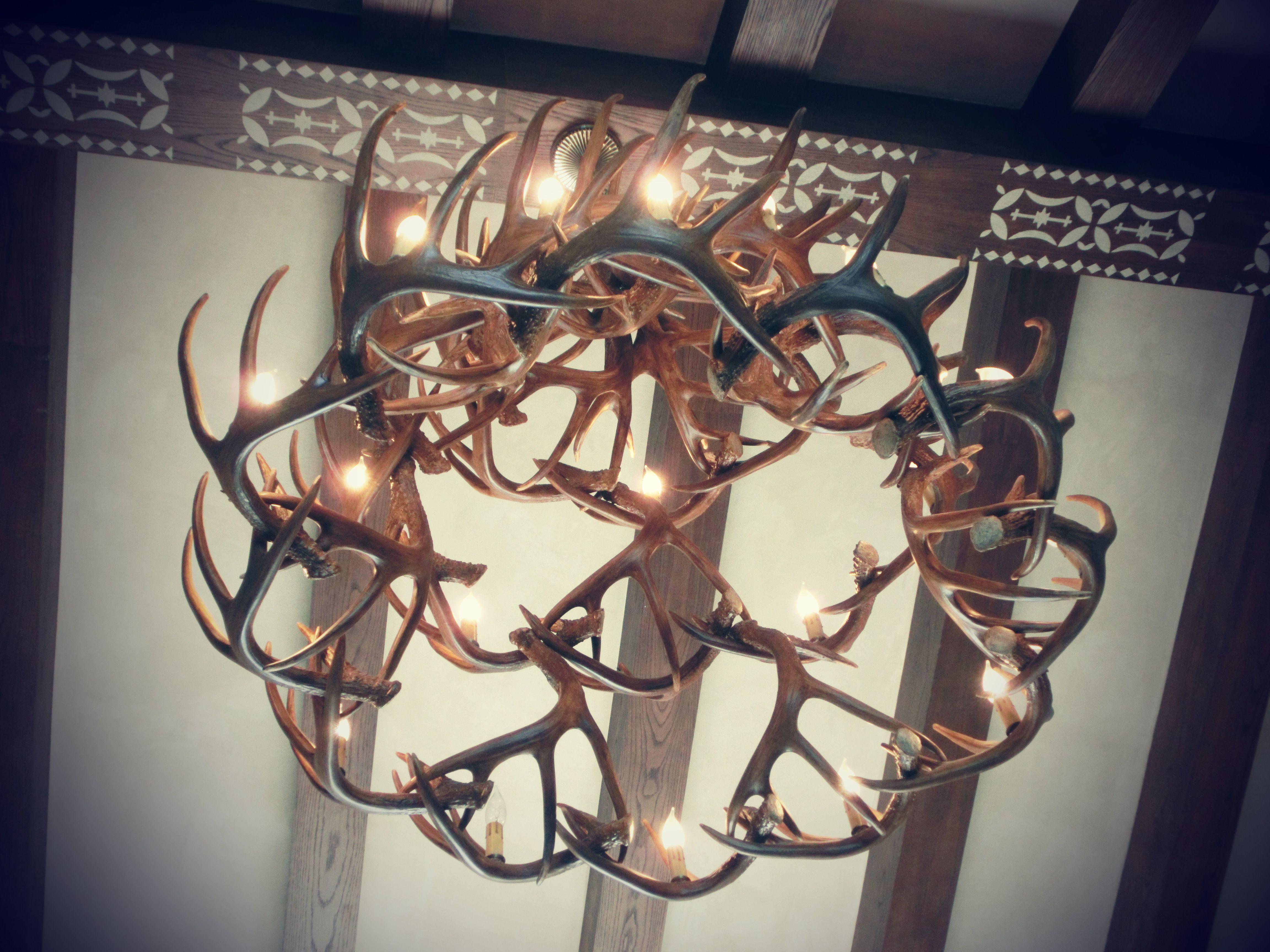 Deer horn chandelier deer horns pinterest deer horns deer horn chandelier mozeypictures Gallery