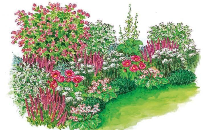 Zum Nachpflanzen: Harmonische Beet-Partie #vorgartenanlegen