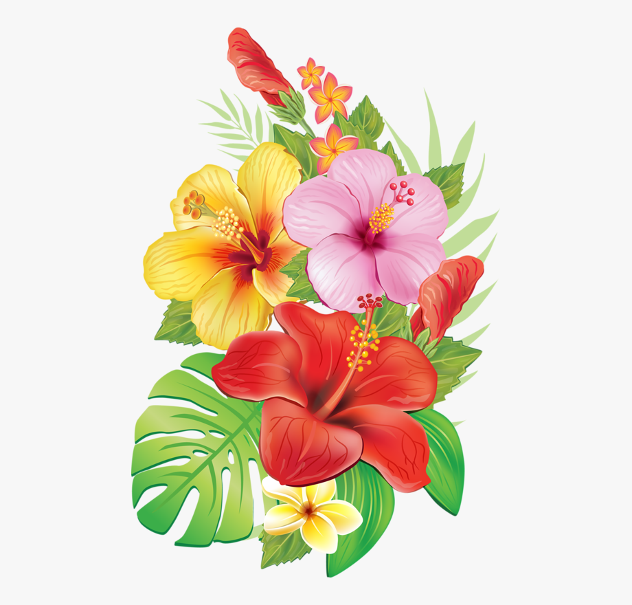 Download And Share Moana Flower Clip Art Tropical Flowers Drawings Cartoon Seach More Similar Free Transp In 2020 Flower Drawing Hibiscus Flower Drawing Flower Art