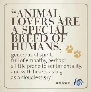 Animal lovers...