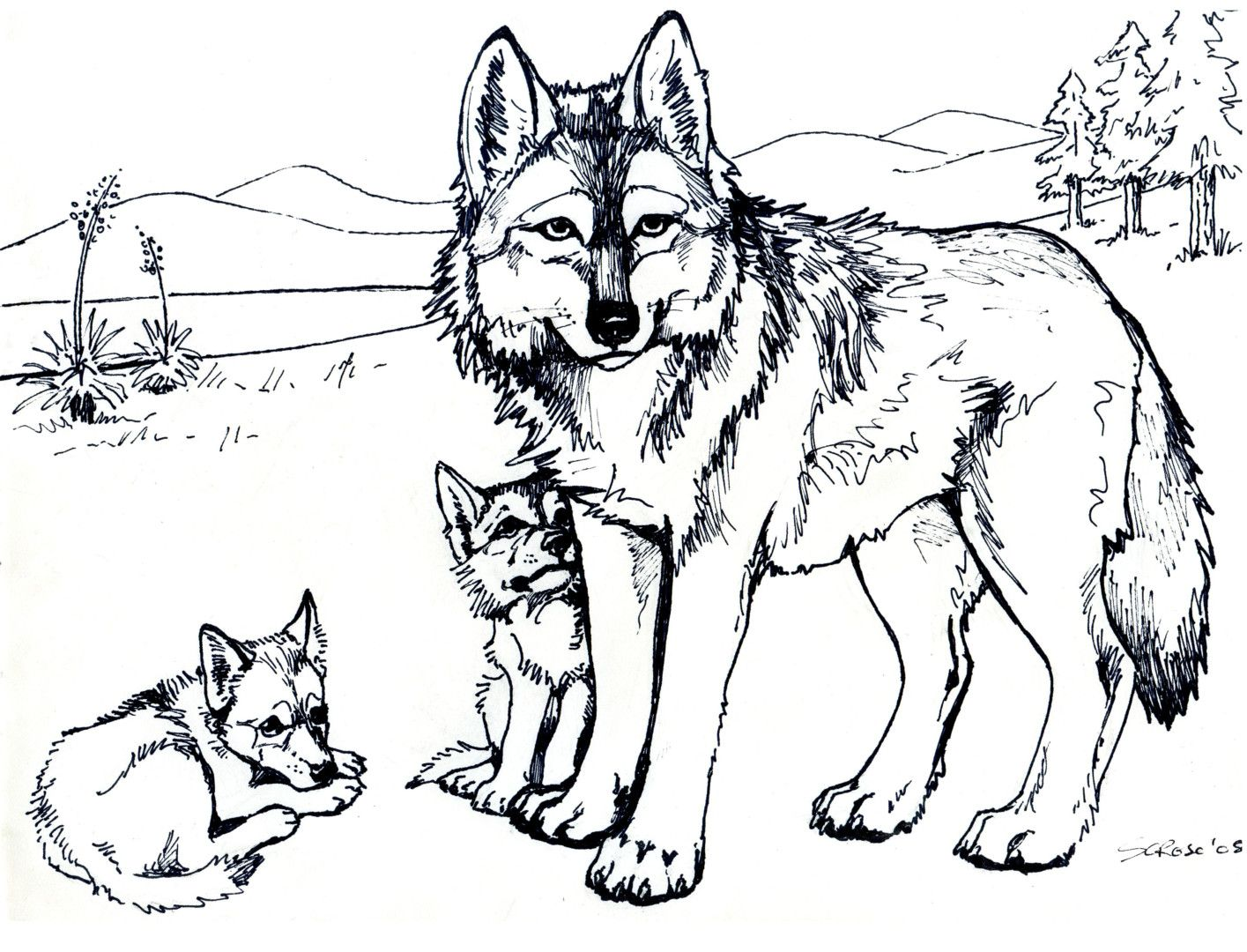 http://colorings.co/wolf-pup-coloring-pages/ #Coloring, #Pages, #Pup ...