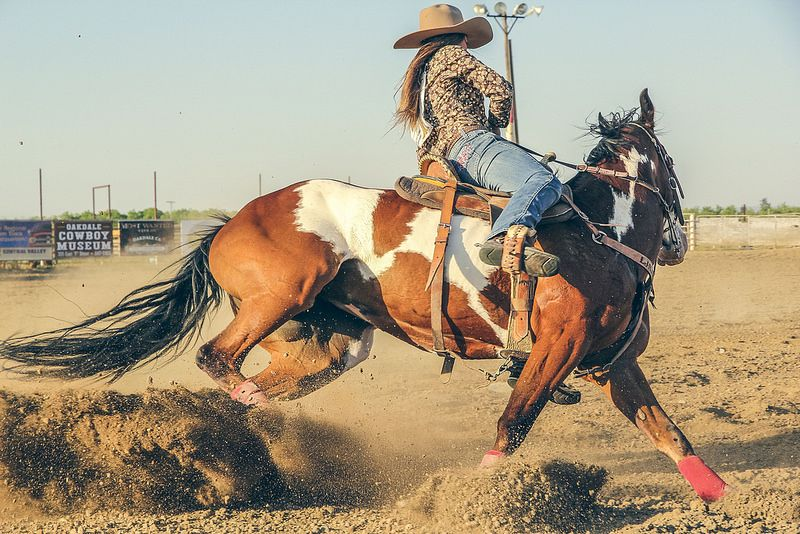 Cowgirl Fast Horses Background Images Rodeo