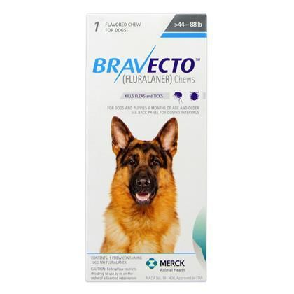 Bravecto Topical For Dogs 1800petmeds Tick Treatment For Dogs Flea And Tick Tick Treatment