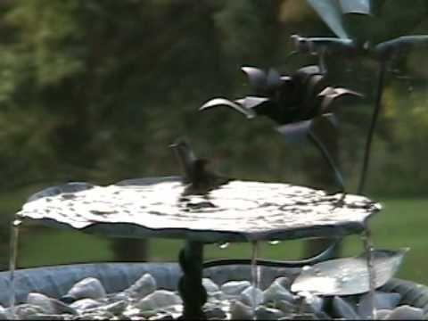 Hummingbirds Bathing In A Copper Birdbath Fountain