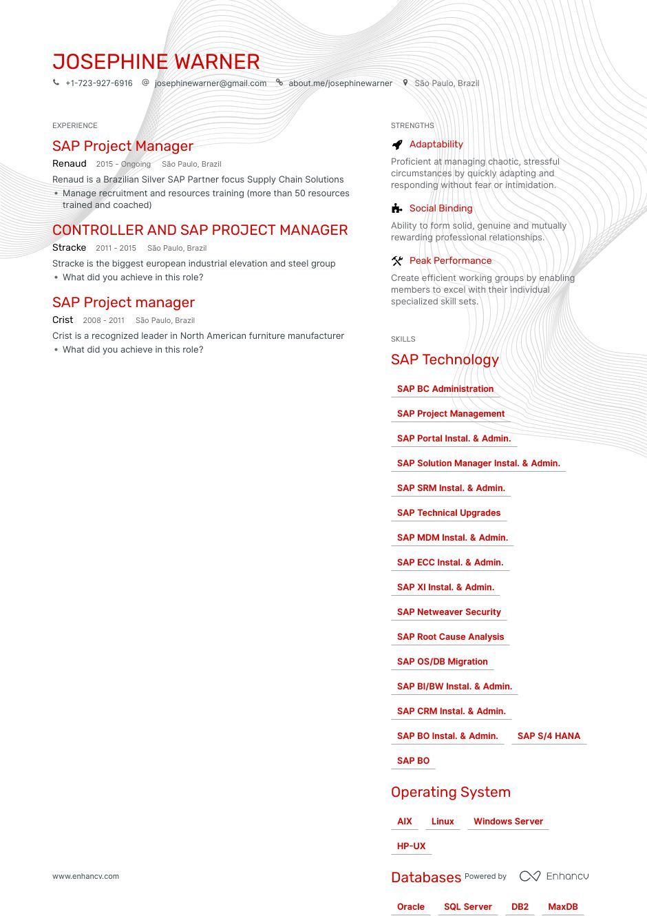 DOWNLOAD Sap Project Manager Resume Example for 2020