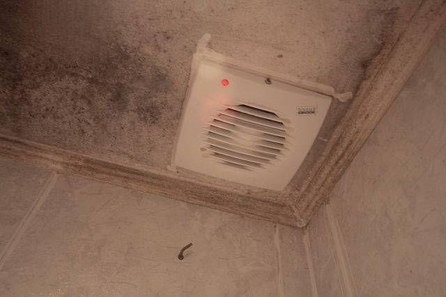 C mo quitar efectivamente el olor a pis del ba o hogar pinterest olor limpieza casa y - Como quitar rayones del piso vinilico ...