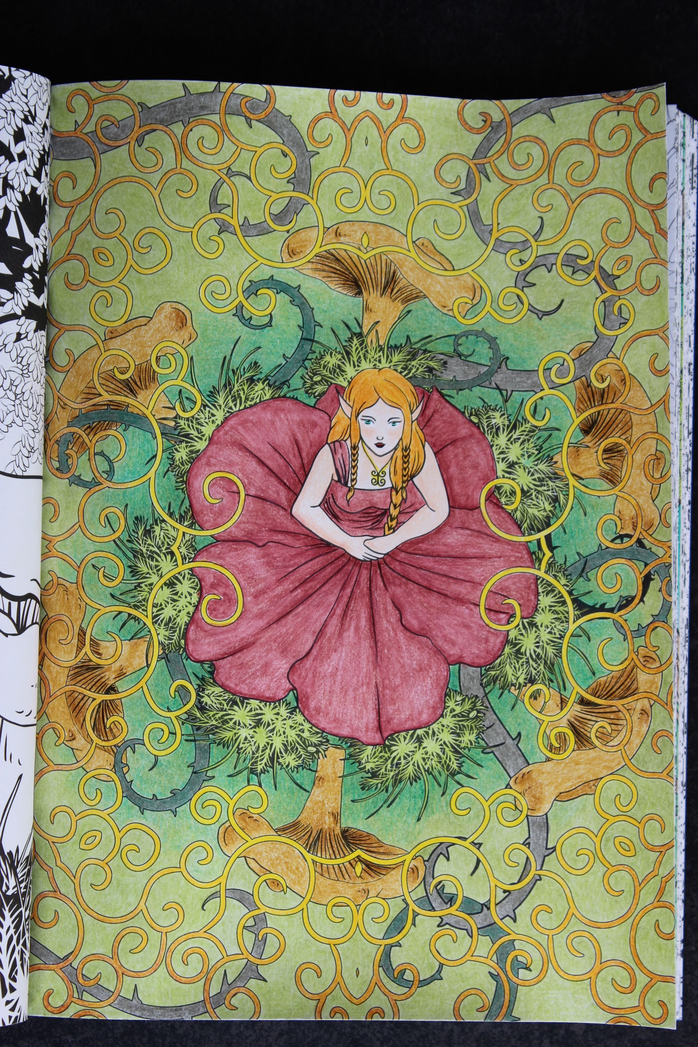 """Livre """"Forªts Féeriques"""" Crayons de couleurs divers"""
