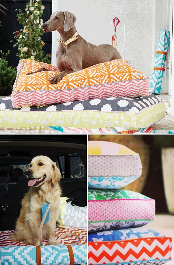 COLORFUL DOG BEDS FROM AUSTRALIAN LABEL POOCCIO THE