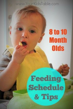 feeding schedule for 8 9 and 10 month olds
