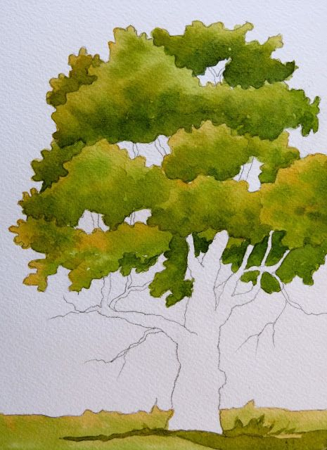 Easy Watercolor Tree Painting For Beginners Art Easy Youtube