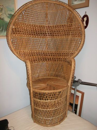 Fan Back Wicker Chair All Weather Outdoor Patio Chairs Peacock Just Needs A Seat Cushion Antique