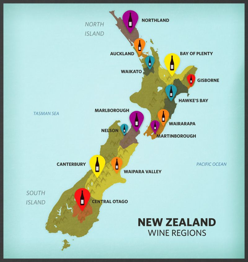 Explore New Zealands Wine Country Wine Explore and Wine tourism