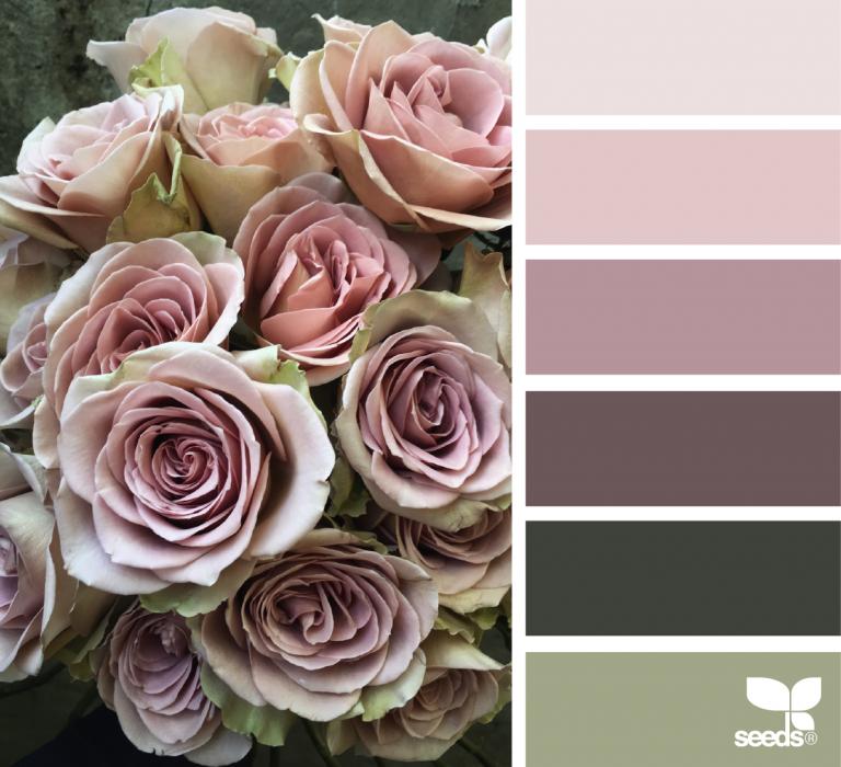 площадка, цвет увядшей розы фото с чем сочетается тексты английского английский