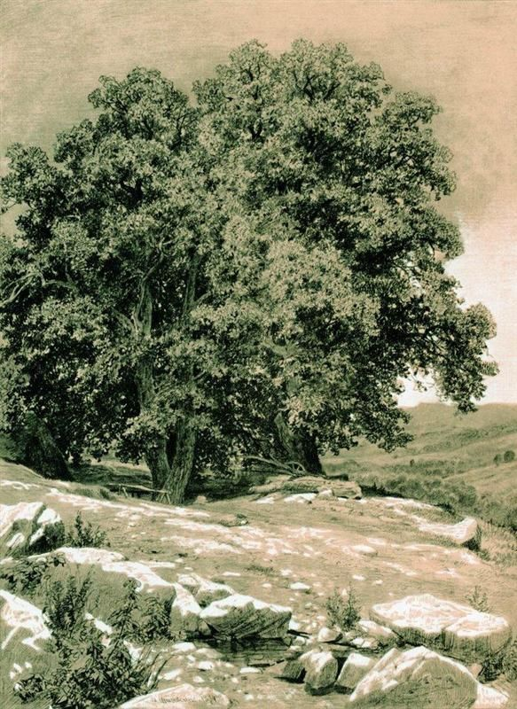 Crimean nut-tree - Ivan Shishkin