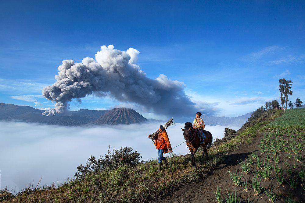 eruption of Mount Bromo - null