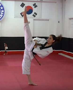 50++ How to kick higher karate trends