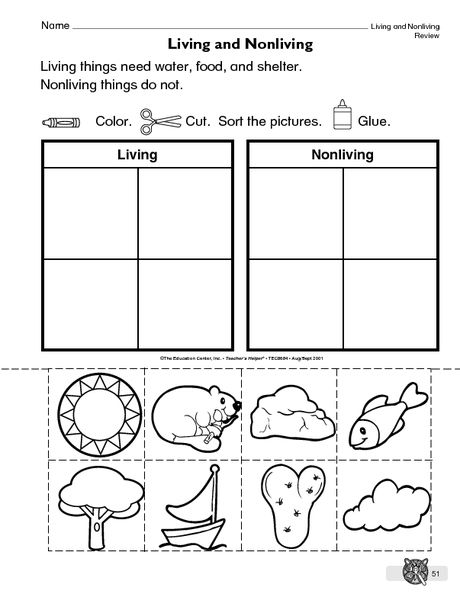 Living Nonliving Things Living And Nonliving Nonliving First Grade Worksheets