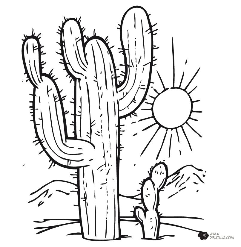 Cactus En El Desierto Dibujos Para Pintar Paisajes Cactus Para