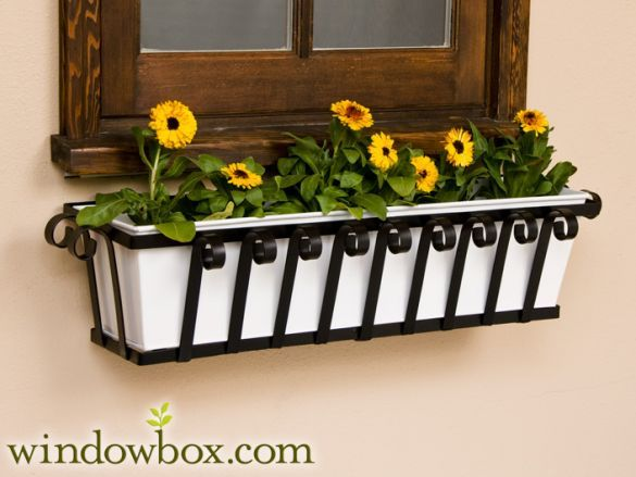 The Venetian Tapered Iron Window Box Nine Liners To Choose From Wrought Iron Window Boxes Metal Window Boxes Window Box