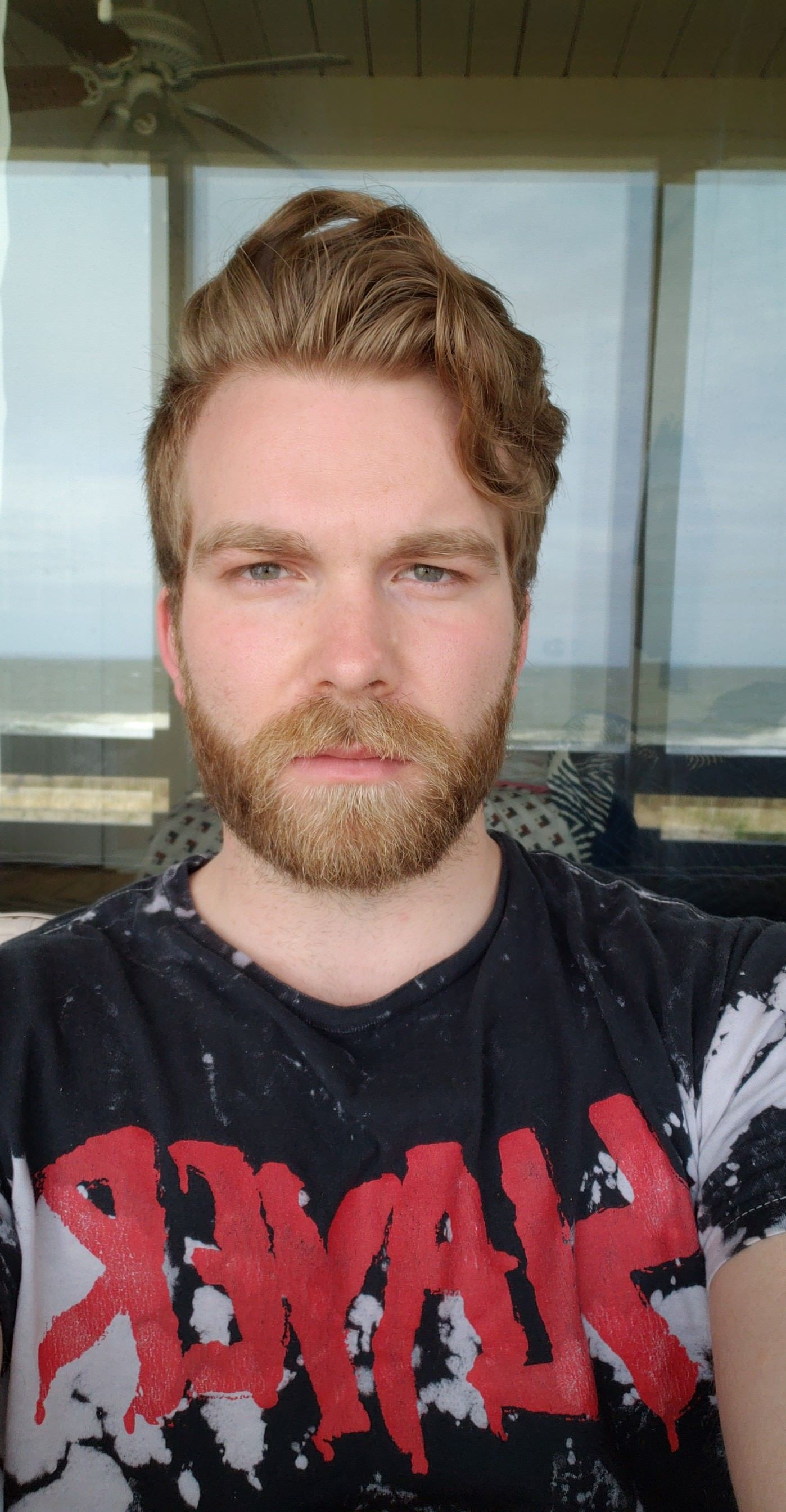 Beach Beard Brown Hair Men Red Beard Brown Beard