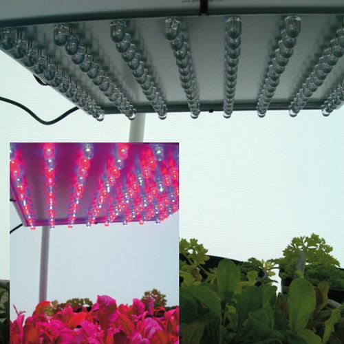 How To Select The Best Grow Light For Indoor Growing 640 x 480
